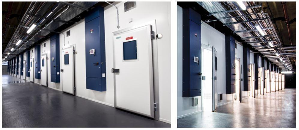Sainsbury Laboratory Plant Growth Rooms