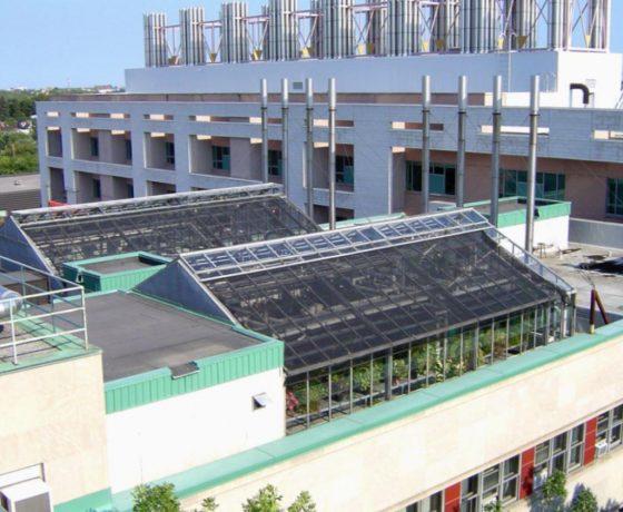 Glasshouse on University Rooftop