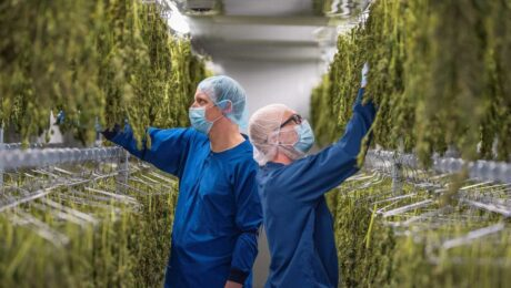 atlanticann-cannabis-drying-room 3