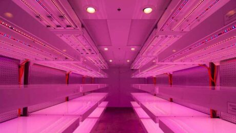 germination-room-philips-LED