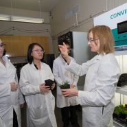 BCIT-short-plant-growth-chamber-students