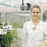 sheffield-university-researcher-plant-growth-room 20