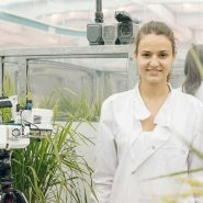 sheffield-university-researcher-plant-growth-room 21