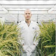 sheffield-university-researcher-plant-growth-room 8