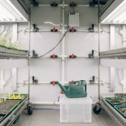 walk-in-plant-growth-room 3