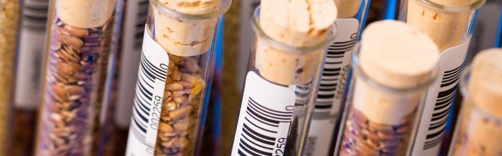 seed-storage