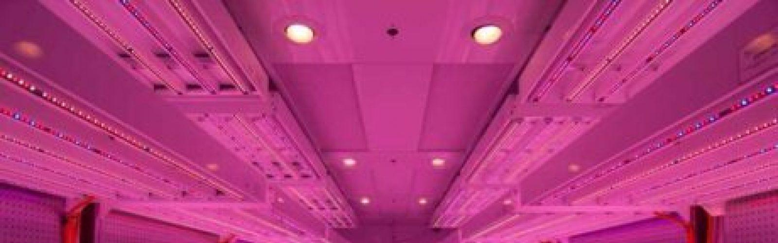 germination-room-philips-LED 3