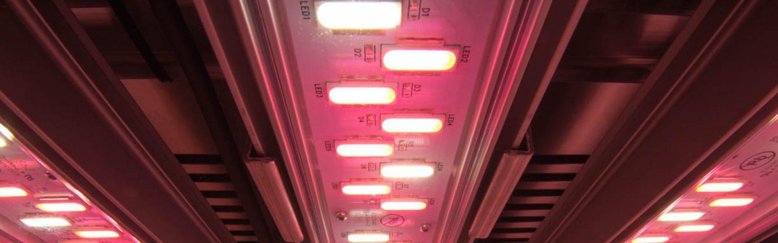 plant-growth-chamber-valoya-LED