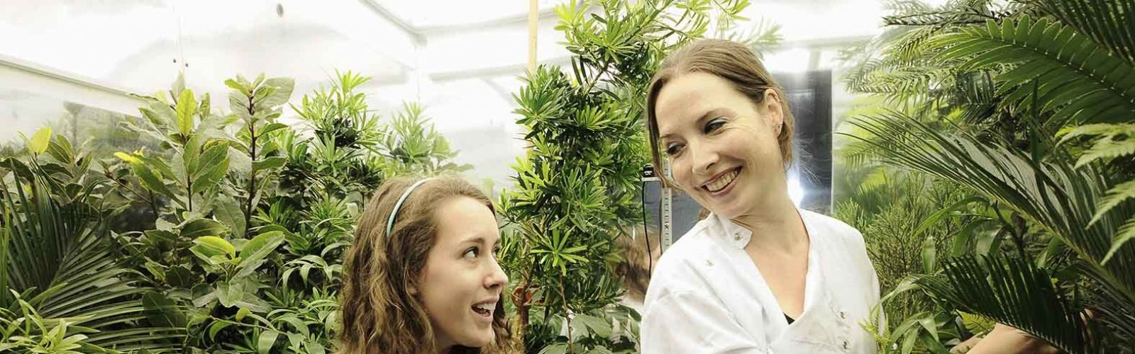 McElwain lab-plant-researchers