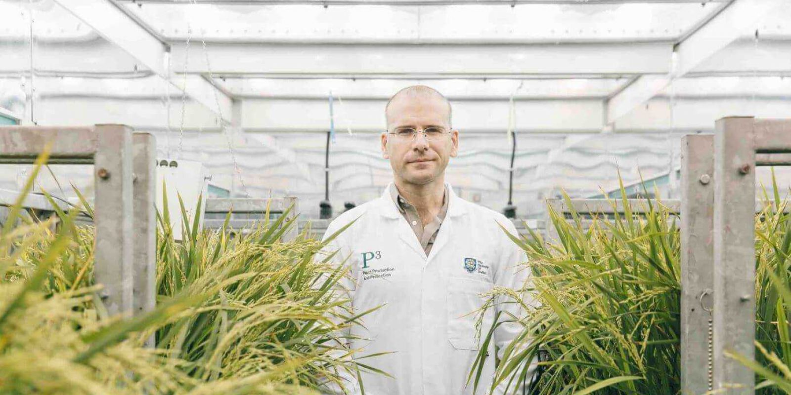 sheffield-university-researcher-plant-growth-room 12