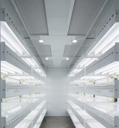 tissue-culture-room