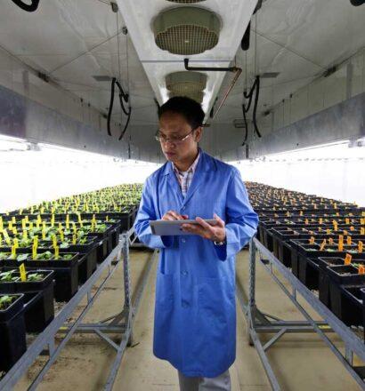 walk-in-plant-grow-room-canola 4