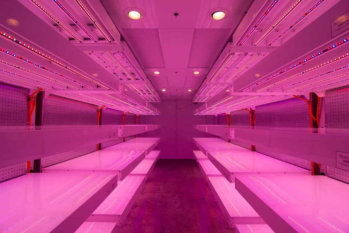 MTPC Vitality Chamber with LEDs for Germination